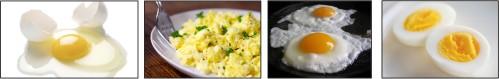 egg.150524