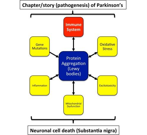 PD-Immune.150505a