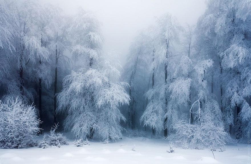 Hình Phong Cảnh Mùa Đông Winter-landscapes-20