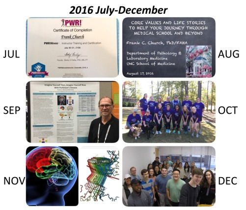 17-02-06-jul-dec-2016